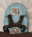graco swing by me with 5 point safety harness